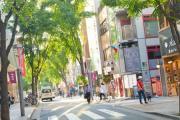 神楽坂通り商店会