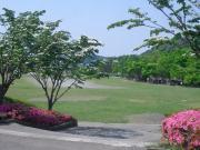 広々と開放的な芝生広場