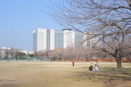 武蔵野中央公園