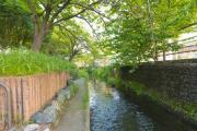 二ヶ領用水(武蔵小杉周辺)