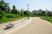 桃井原っぱ公園