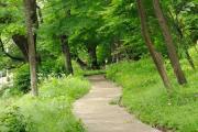 東京都立戸山公園(箱根山地区)