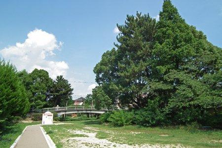 萩の寺公園